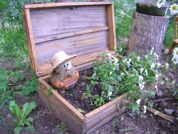 Поделки для сада из овощей своими руками