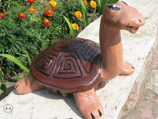 Черепаха своими руками из гипса мастер класс