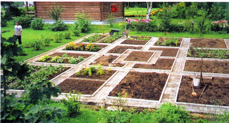 Сад, огород, участок и дом - как обустроить